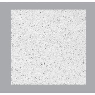 Sandrift ClimaPlus 2 Ft. x 2 Ft. White Cast Mineral Fiber Ceiling Tile (8-Count)