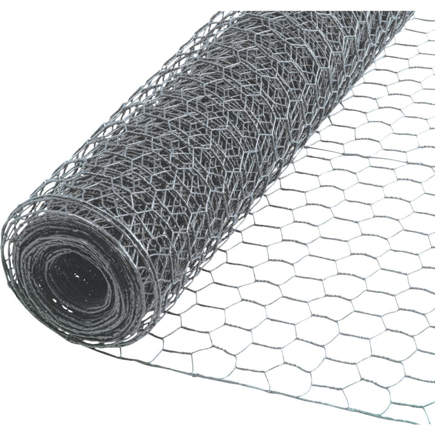 Do it 1 In. x 72 In. H. x 150 Ft. L. Hexagonal Wire Poultry Netting Image 1